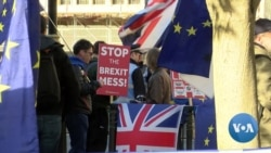EU Nationals in Britain Fear Brexit Future