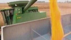 نيمی از آمريکا در معرض خشکسالی است