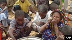 Голод может стать главным наследием XXI века