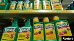 ຢາຂ້າພືດ Roundup ຂອງບໍລິສັດ ໂມແຊນໂຕ ທີ່ວາງຂາຍ ຢູ່ຮ້ານຂາຍອຸບປະກອນເຮັດສວນແຫ່ງນຶ່ງ ໃກ້ໆນະຄອນບຣັສເຊິລສ໌ ປະເທດແບລຈ້ຽມ. (27 ພະຈິກ 2017)