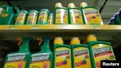 Glifosat, yang umumnya dikenal sebagai RoundUp produksi perusahaan AS Monsanto, kini dilarang dipakai di Thailand.
