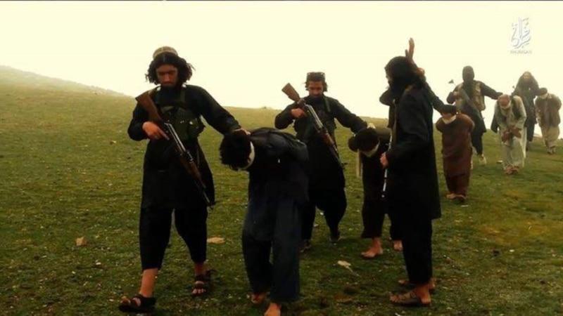 افغانستان میں داعش کے ابھرنے میں ہمارا کوئی ہاتھ نہیں، امریکہ