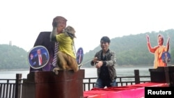 "Un singe porte un tee-shirt ""le roi de la prédiction"" et embrasse la photo de Donald Trump, à Changsha, Chine, le 3 novembre 2016."
