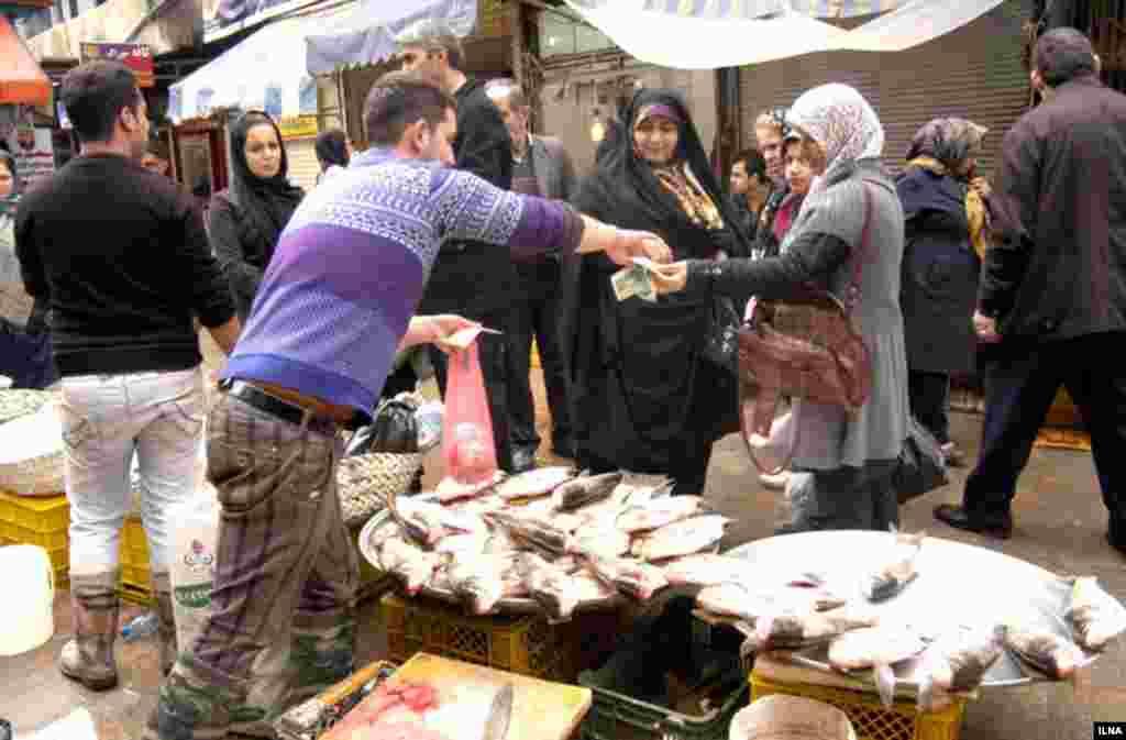 بازار ماهی فروشهای رشت عکس: ابوذر حمیدیRasht Fish Market
