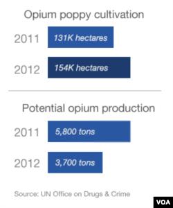 Opium crop cultivation in Afghanistan