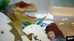 Un garçon chinois devant un modèle de dinosaure avant sa prise de poser photo à Beijing, le 6 Août 2014.