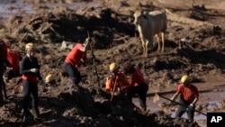 브라질 미나스 제라이스주 브루마지뉴 지역에서 댐이 붕괴하는 사고가 발생한 후 구조대원들이 28일 실종자 수색작업을 하고 있다.