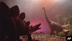Ενας αστεροειδής πιστεύεται ότι εξάλειψε τους δεινόσαυρους πριν από 65 εκατομμύρια χρόνια.