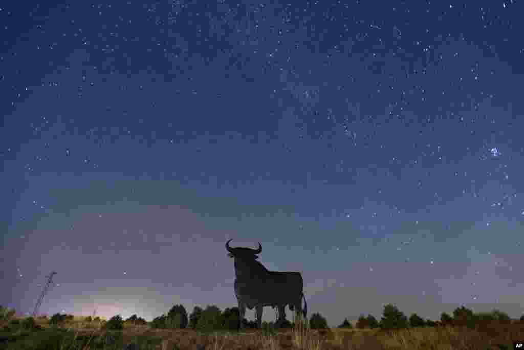 Spain Perseid Meteor Shower