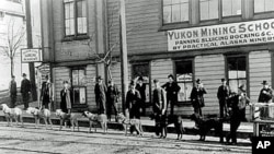 This mining school, complete with sled dogs, was set up in Seattle as a training site for potential Klondike prospectors.