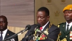 Crowd Cheers as Mnangagwa Pays Tribute to Former Boss Mugabe