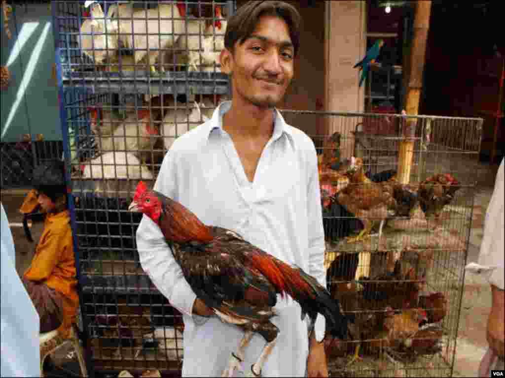 ایک نوجوان اپنا پالتو مرغا فروخت کرنے اس مارکیٹ میں موجود ہے