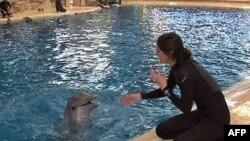 Melisa Zabojnik radi sa delfinima već deset godina