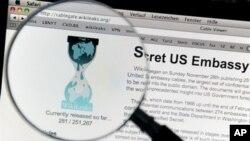 Nova strategija internetske stranice WikiLeaks