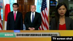 VOA连线(许湘筠):日本外相与美国代理国务卿会面,就朝鲜问题进行讨论