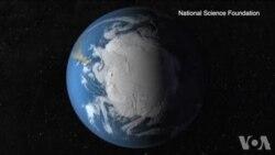 南极冰层下发现多种海洋生物