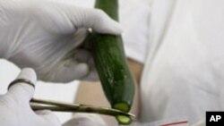 E. coli အစာအဆိပ္တက္ ဝမ္းပ်က္ေရာဂါ
