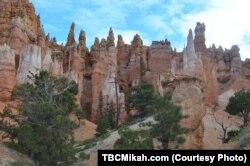 Salah satu daya tarik utama di Taman Nasional Bryce Canyon di Utah selatan adalah ribuan tudung warna merah, pilar berbentuk aneh yang terbuat dari batu yang berasal dari jutaan tahun yang lalu. (Foto: Courtesy)