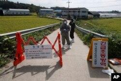 아프리카돼지열병 발병이 확인된 한국 경기도 파주시의 농장 주변에서 보건 관계자들이 출입을 통제하고 있다.