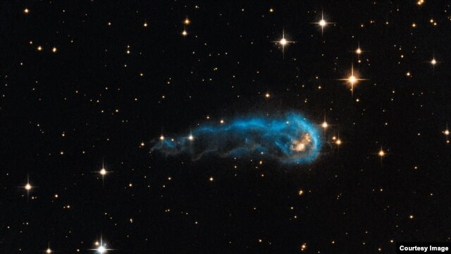 "The ""cosmic caterpillar,"" called IRAS 20324+4057, is a protostar in a very early evolutionary stage."