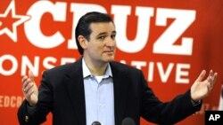 En caso de que Cruz gane un curul en el Senado de Estados Unidos, se convertiría en el cuarto cubanoamericano en ocupar un cargo de esa dignidad.