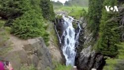 Rainier dağının cənnəti