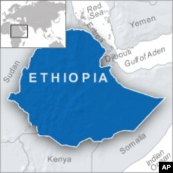 Ethiopia Detains Two Prominent Opposition Politicians