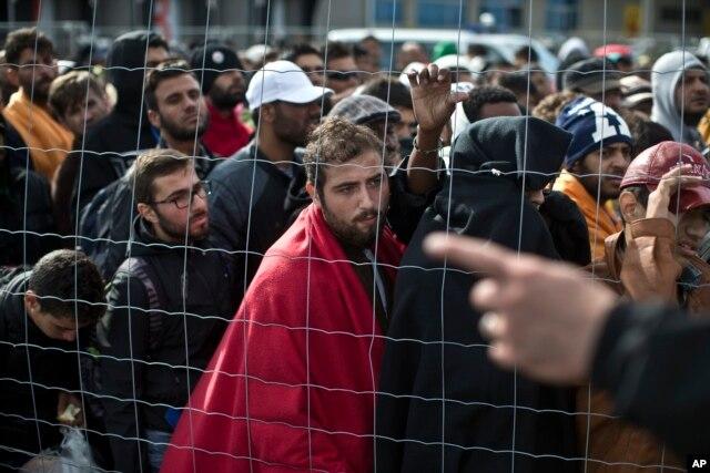 Di dân xếp hàng đợi lên xe buýt do chính phủ Áo sắp xếp ở thành phố Hegyeshalom, Hungary, ngày 6 tháng 9, 2015.