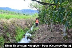 Saluran air di sekitar persawahan penduduk yang turut menjadi lokasi fokus keong Oncomelania di desa Lengkeka Kecamatan Lore Barat, Kabupaten Poso, Sulawesi Tengah (Courtesy: Dinas Kesehatan Kabupaten Poso)