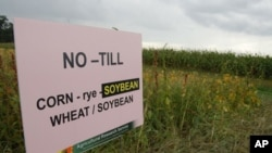 No-till agriculture is one of the benefits of GE crops that is threatened by poor management