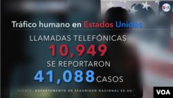 Número de llamadas telefónicas para reportar casos de tráfico humano en EE.UU.