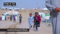 Iraqi Civilians Flee to Syria Amid Mosul Offensive
