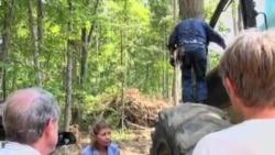 深山里的女伐木工