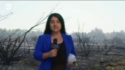 В Калифорнии начался сезон пожаров, огонь полыхает на севере и юге региона