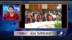 VOA卫视(2016年1月29日 第二小时节目 焦点对话 完整版)