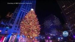 У Нью-Йорку запалили вогники головної ялинки міста. Відео