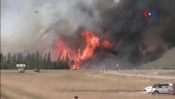 Canada đạt bước ngoặt trong công tác dập tắt cháy rừng