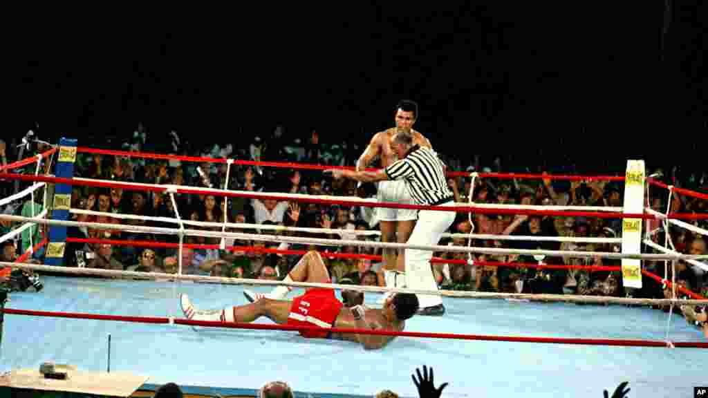 Muhammad Ali, challenger, est dirigé vers un coin du ring par l'arbitre Zack Clayton après avoir mis K.O le champion en titre George Foreman, au cours du huitième round du combat de championnat WBA à Kinshasa, au Zaïre, sur 30 octobre 1974. Ali reprend la couronne comme le champion du monde poids lourd incontesté par KO dans leur lutte surnommé «Rumble in the Jungle». (AP Photo)