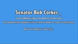 Wareysi: Senator Bob Corker