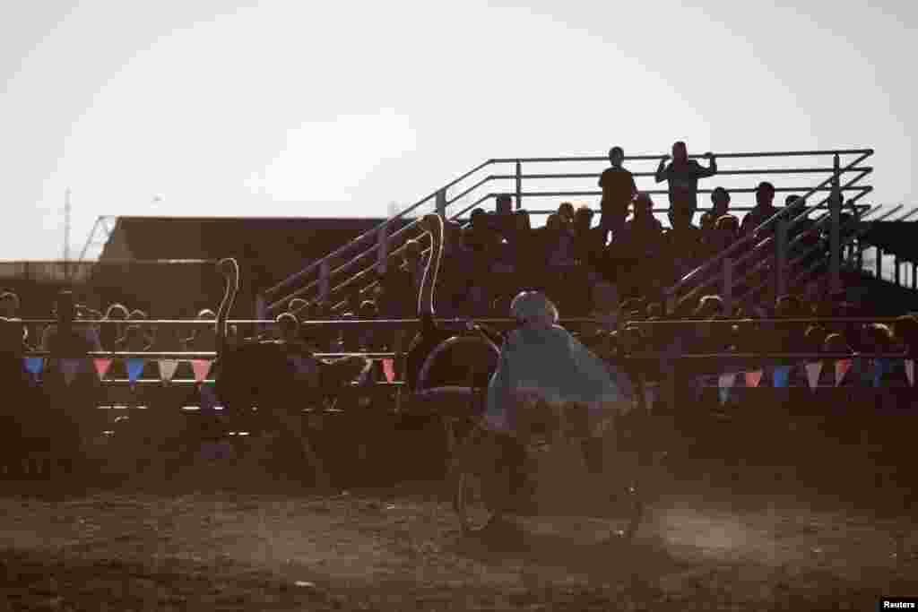 امریکہ: شتر مرغ پر سواری کا منفرد مقابلہ