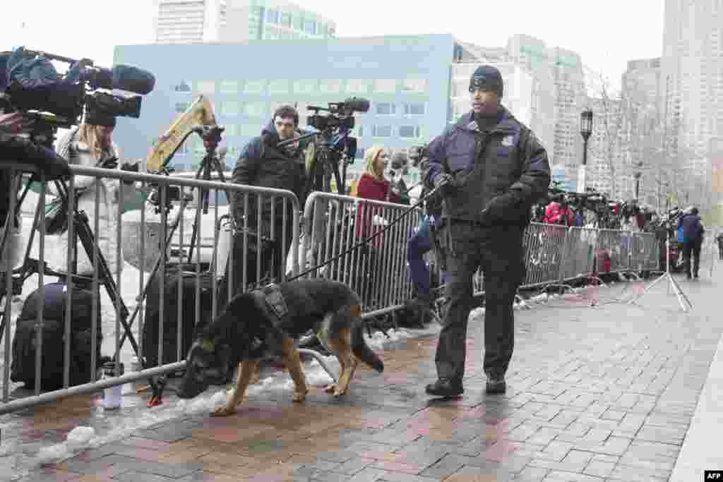 A police dog sniffs near news cameras outside the U.S. Courthouse during the first day of the Dzhokhar Tsarnaev trial, in Boston, Massachusetts, March 4, 2015.