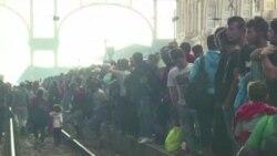 کامرون از آمادگی بریتانیا برای پذیرش هزاران پناهجوی سوری خبر داد