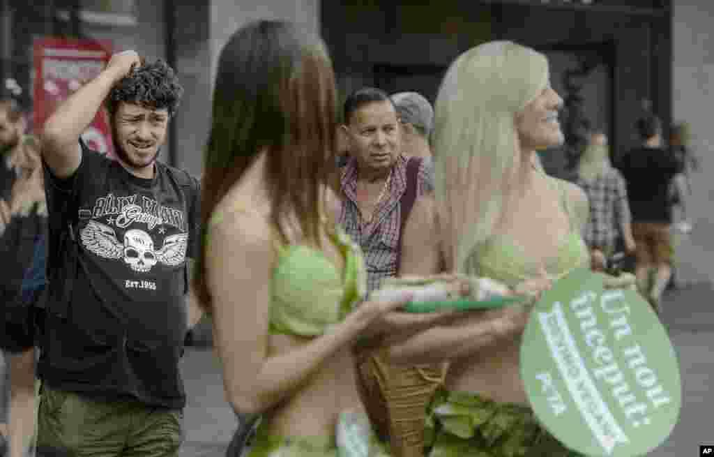 อยากกินผักขึ้นมาทันที! ชายชาวโรมาเนีย ในเมืองบูคาเรส ทำสีหน้างุนงง ระหว่างที่ Lettuce Ladies หรือสตรีสวมบิกีนี่ที่ทำด้วยผักกาด ที่เป็นตัวแทนจากองค์กรพิทักษ์สัตว์ PETA กำลังรณรงค์ให้ชาวโรมาเนียหันมาบริโภคอาหารมังสวิรัติแทนการรับประทานเนื้อสัตว์
