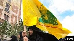 La audiencia del Congreso analizó la presencia de Hezbolá en América Latina.