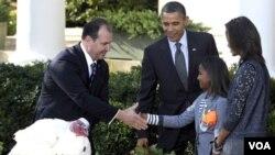 """Sasha Obama saluda al presidente de la Federación Nacional de Criadores de Pavos, Yubert Envia, junto al presidente Barack Obama y Malia Obama, tras el perdón al pavo """"Apple""""."""