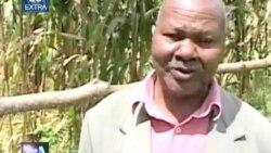 VOA 60 - Extra - Kenya Agriculture