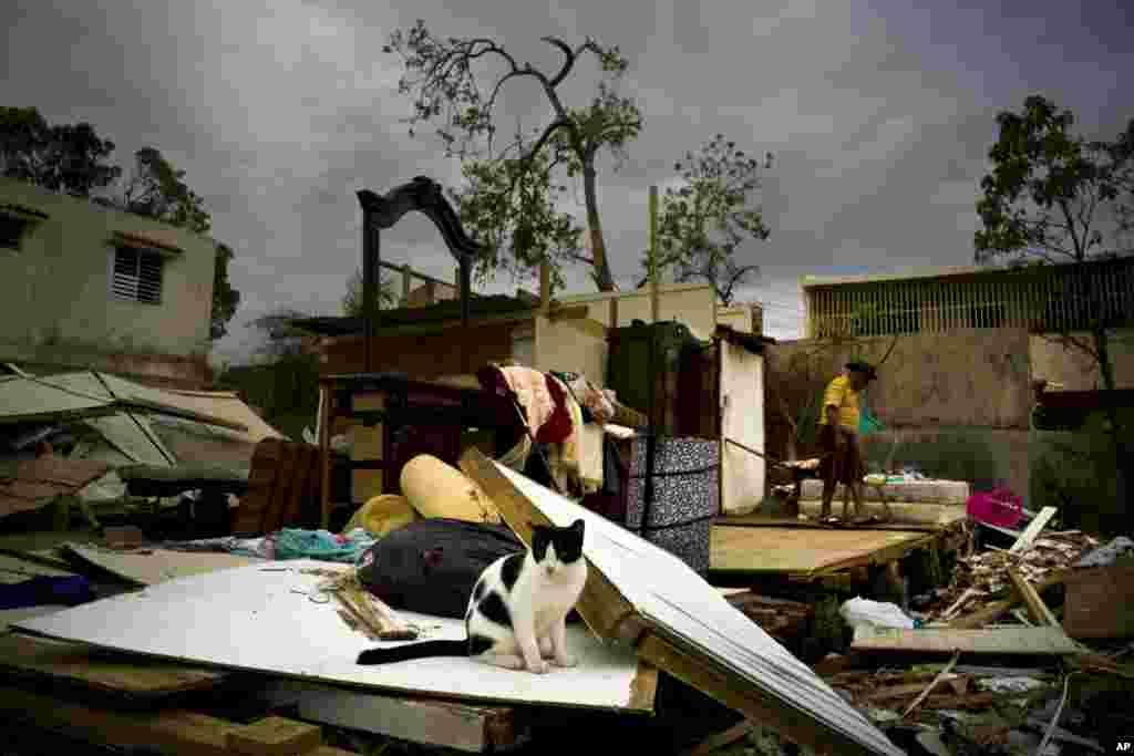 وسایل باقی مانده از خانه ای ویران شده پس از توفان ماریا در پورتوریکو
