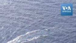L'ONG Sea-Watch sauve des centaines de migrants en Méditerranée