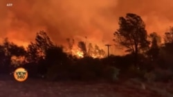 امریکہ: جنگلات کی آگ کے باعث ماحولیاتی تبدیلی زیرِ بحث