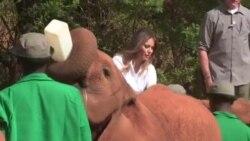 Melania Trump à la rencontre d'éléphants au Kenya (vidéo)